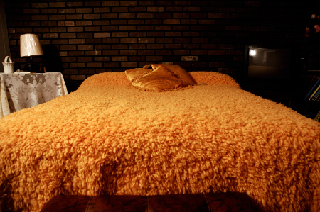 0587-big_orange_bed.jpg