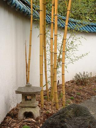 bamboo_room.jpg