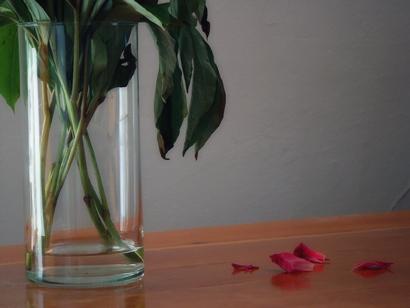lonely-petals.jpg