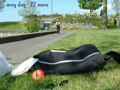 12noon - picnic at the park